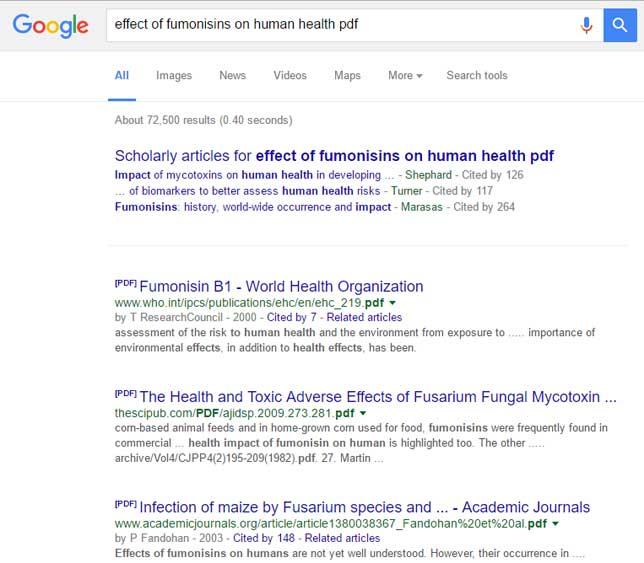 Google Search_Fumonisin