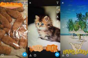 snapchat object-recognition filter identifies food, pets