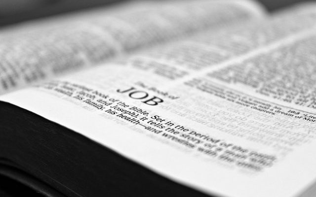 best bible apps for android