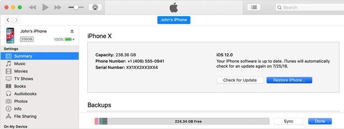 reset passcode on iPhone XS